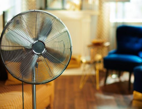 My Fan